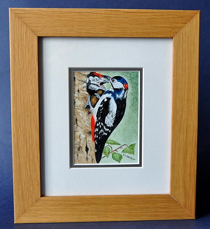 Elliot Hall Enamels Great Spotted Woodpecker Plaque